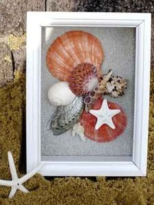 Another shell shadow box. I was trying to pull out the coral color in the shells. (LOVE the shell placement! Much more showy and interesting to the eye. Not too cluttered, but just right! Seashell Shadow Boxes, Seashell Frame, Diy Shadow Box, Seashell Art, Seashell Crafts, Seashell Projects, Sea Crafts, Creation Deco, Home And Deco