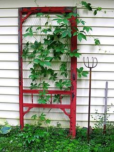 Red Screen Door Trellis (The red is striking against the white wall. Wood screen doors are still pretty cheap to buy. Wood trim from a big-box hardware store could add detail to the plain screen door. Then all you need is paint!) - Gardening Now Garden Junk, Diy Garden, Garden Trellis, Upcycled Garden, Garden Ideas, Wire Trellis, Porch Trellis, Garden Gate, Old Screen Doors