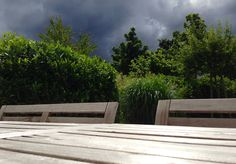 Dark clouds sliding over our garden...