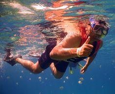 Snorkelimg - Actividades en la guía de turismo y alojamientos ROSES.NET en Roses, Costa Brava. #roses #costabrava #venaroses #visitroses #vacaciones #vacances #holidays #snorkeling