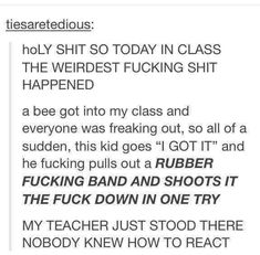 23 Hilarious School Stories To Read Instead Of Doing Your Homework - Humor College Stories, Funny School Stories, Funny Tumblr Stories, Funny Tumblr Posts, My Tumblr, Funny School Quotes, Weird Stories, Stories To Read, Funny Stories To Tell