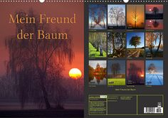 Mein Freund der Baum 2015 Kalender