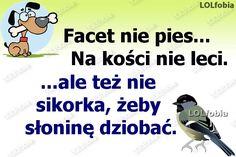 LOLfobia: Facet nie pies na kości nie leci... Weekend Humor, Man Humor, Motto, Jokes, Wisdom, Lol, Funny, Fotografia, Humor