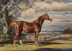 Thomas Sherwood La Fontaine (1915-2007) ''SWEET SOLERA'' signed & titled, oil on board, 41 by 30.5cm., gilt frame Sweet Solera won the 1,000 Guineas and Oaks in 1961. She was the Timeform top-rated European three-year-old filly of the year, and has a Pattern race run at Newmarket in her name.
