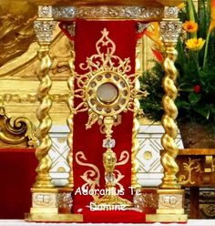"""""""God dwells in our midst, in the Blessed Sacrament of the altar. He remains…"""