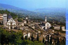 PepeMare: Assisi
