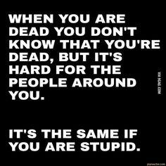 Dead as stupid...