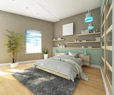 Teen boy's modern bedroom with earthy brown walling, timber flooring, shelves and grey floor rug