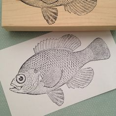 Large Bluegill Fish Stamp 2959 by 100ProofPress on Etsy
