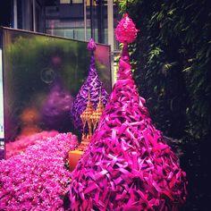 Bangkok Orchid Paradise Bangkok Trip, Bangkok Travel, Orchids, Paradise, Christmas Tree, Holiday Decor, Teal Christmas Tree, Xmas Trees, Christmas Trees