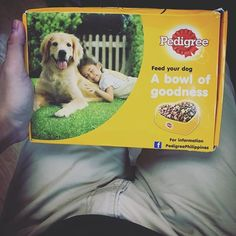 """""""Alicesu will be so happy. Free food for the next uhm, two meals?! Woof! Thank you #PedigreePH! #husky . . . #instagood #tbt #photooftheday #instamood #bloggers #blogging #bloggingtips #problogging #blogpromotion #bloggerlife #bloggersgetsocial #bloggerproblems #bloggerstyle #travel #blogger #blogging #POTD #travelblogger #instagram #instagramhub #instagramers #iphone #iphonesia #traveling #travelling #travelphotography #huskypuppy #puppylove #iphone7"""" by @excusemeno (J O S E P H . D A L E Y…"""