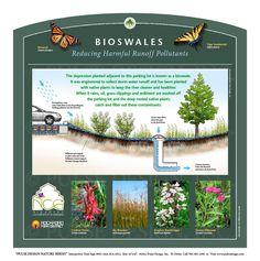 Bioswale Sign