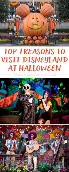 Top 7 Reasons to Visit Disneyland at Halloween Disneyland October, Disneyland California, Disneyland Trip, Disneyland Secrets, Disneyland World, Disneyland Resort, Disney World Vacation, Disney Vacations, Family Vacations