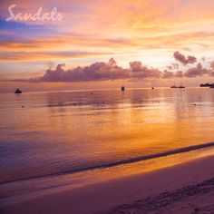 Experience Sandals Negril: ✓ All-inclusive beach resort ✓ Exceptional butler service ✓ Plethora of watersports included - Book direct for the best price! Adventure Awaits, Adventure Travel, Sandals Beach Resort, All Inclusive Beach Resorts, Caribbean Honeymoon, Honeymoon Inspiration, Escape Plan, Negril, Amazing Sunsets