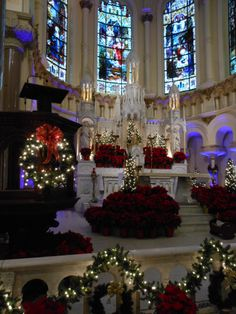 Downtown Tampa's Sacred Heart Catholic Church decorated for Christmas. Photo submitted by real estate agent, Lesley Dobbins.