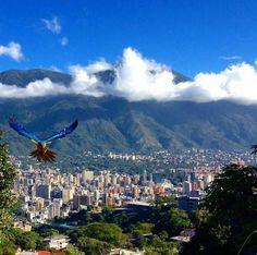Caracas solemne, Venezuela encantada