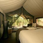 Paperbark Camp - Luxury Accommodation, Jervis Bay, South Coast NSW - Deluxe Tents