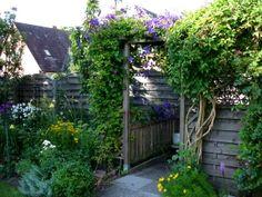 Absoluter Laie Benotigt Hilfe Fur Kleinen Garten Mit Fotos Seite 2 Gartengestaltung Mein Schoner Garten Online Gartengestaltung Garten Sommergarten