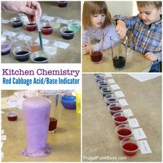 Kitchen Chemistry for Kids: Test for Acids and Bases with Red Cabbage - Frugal Fun For Boys and Girls Kids Science Lab, Chemistry For Kids, Kitchen Chemistry, Elementary Science, Summer Science, Science Classroom, Science Education, Chemistry Experiments, Cool Science Experiments