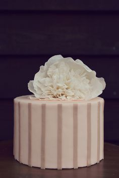 Cute one tier bride & groom wedding cake in blush with tan stripes and large fluffy sugar peony. Cake Shop, Custom Cakes, Peonies, Wedding Planner, Wedding Cakes, Cupcakes, Cheese, Bride Groom, Minis