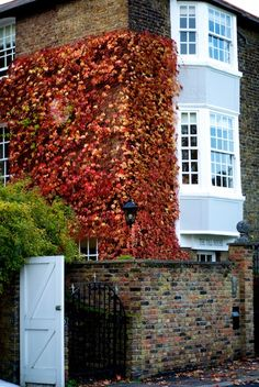 Autumn in Surrey - Wimbledon, London