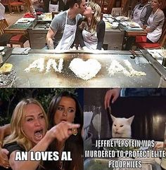 """All The Best 'Woman Yelling At Cat' Memes In One Convenient Place - Funny memes that """"GET IT"""" and want you to too. Get the latest funniest memes and keep up what is going on in the meme-o-sphere. Memes Humor, Lol Memes, Really Funny Memes, Stupid Memes, Stupid Funny Memes, Funny Relatable Memes, Funniest Memes, Funny Gifs, Funny Images"""