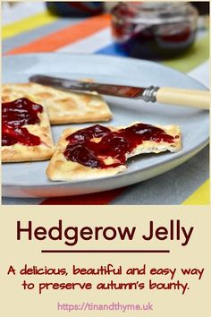 Hedgerow Jelly. A glorious ensemble of whatever edible fruits you can forage. It's a delicious, beautiful and easy way to preserve autumn's bounty. Can include crab apples, blackberries, hawthorne berries, rosehips, sloes and so much more. #TinandThyme #HedgerowJelly #ForagedFoods #AutumnRecipe #preserves Jelly Recipes, Jam Recipes, Great Recipes, Dessert Recipes, Cooking Recipes, Recipe Ideas, Snack Recipes, Homemade Jelly, Homemade Gifts