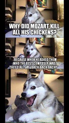 I love pun husky