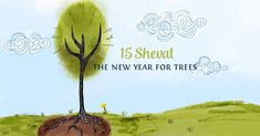 """The 15th of Shevat on the Jewish calendar is the day that marks the beginning of a """"new year"""" for trees."""