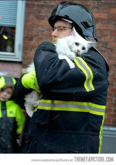 The Cat has just been saved by a Firefighter... The eyes of this Cat say it all!