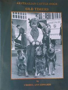 Vintage Cattle dogs, aka Australian heeler