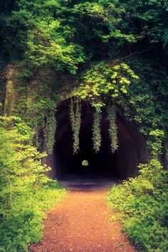 Old Disused Railway Tunnel at Usk, Monmouthshire, Wales