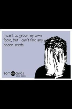 I want to grow my own food, but I can't find any #bacon seeds...