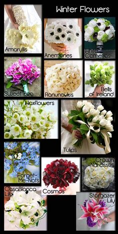 Winter Wedding Flowers A Seasonal Guide with Photos Save money by choosing flowers in season for your wedding. The right flowers can set your event off and make it truly special. My Big Day Events, Loveland Colorado. Party & Event Planning. Serving