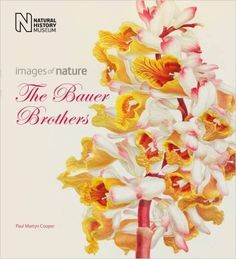 The Bauer Brothers: Images of Nature: Paul Martyn Cooper: 9780565093594: Amazon.com: Books