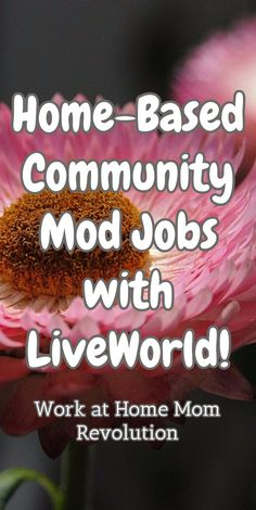 Home-Based Community Mod Jobs with LiveWorld! / Work at Home Mom Revolution Making Money On Ebay, Make Money From Home, Make Money Online, Ways To Earn Money, Way To Make Money, Work From Home Companies, Job Posting, Budgeting Money, Work From Home Moms