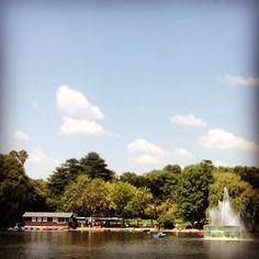 Zoo Lake -  #4 Outdoor Adventures Johannesburg, South Africa #JetpacCityGuides #Johannesburg