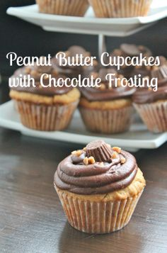 Peanut Butter Chocolate Cupcakes with Chocolate Frosting