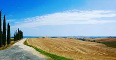 regram @piero_bordonaro La campagna toscana è costruita come un'opera d'arte. Come se non avesse altra preoccupazione che la bellezza! #tuscany #toscana #nature #instagood #moment #landscape #terradisiena #terraditoscana #stradebianche #landscape #paesaggio #campagna #tuscania #tuscanygram #siena #tuscanstyle #bellezza #beautiful #wonderful #views #followme #chianti #italy #photography #photo #picoftheday #picture #stupendo