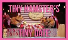Tiny Hamster's Tiny Date (Ep. 5)