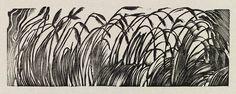 """""""Grasses"""" by Eric Ravilious (wood engraving) Tinta China, Art Prints, Lino Prints, Block Prints, Encaustic Painting, Botanical Illustration, Botanical Art, Wood Engraving, Gravure"""