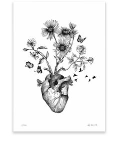alfredbasha heart HEART alfredbashaYou can find Heart drawing and more on our website Art Drawings Sketches, Tattoo Drawings, Heart Drawings, Kunst Tattoos, Anatomy Art, Heart Anatomy Drawing, Anatomy Tattoo, Heart Illustration, Sunflower Tattoos