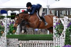 Katie Robinson and Rock Steady Claim Amateur-Owner Hunter Championship for World Champion Hunter Rider Week    http://phelpsmediagroup.com/viewarticle.php?id=7506
