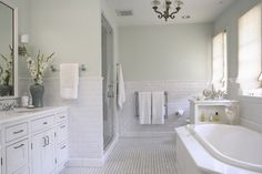 Sherwin Williams Glass Block- calm light gray/green.  Please read comments for more info about this color.