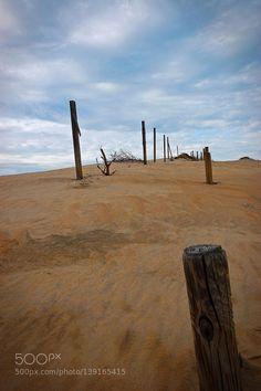 Dune Fence by Breezeway
