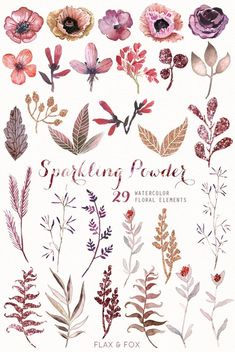 Sparkling Powder 29 Watercolor Elements, hand painted clipart, floral wedding invite, greeting card, This set of high quality hand painted … Watercolor Clipart, Watercolor Flowers, Watercolor Art, Watercolor Wedding, Floral Wedding Invitations, Wedding Invitation Cards, Wedding Cards, Diy Wedding, Tatto Floral