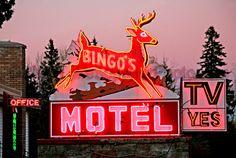 Neon motel sign - Bingos