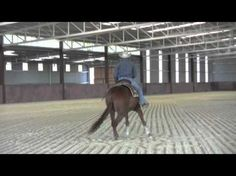 Teaching reining spins. This is such a good video! It makes sense and I think I'm gonna try this....not just for spins but everything I do.