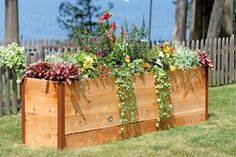 """Elevated Cedar Raised Bed, 2' x 8'--also in a variety of other sizes. If I were a rich woman, I'd have these surrounding my patio--and maybe along my fence-- for both flowers and vegetables. Because I am not a rich woman, I will read the Gardener's Supply Catalog every year, sigh, and say, """"Ah, some day..."""""""