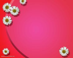 Wedding Background Images Free Download